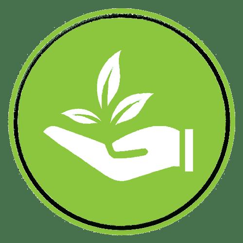 Eco Friendly - Environmental Sustainability